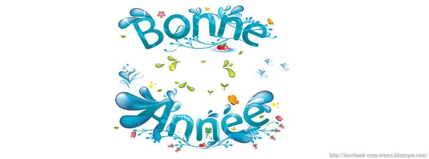 http://www.ulmo.net/images/bonne-annee-2013.jpg
