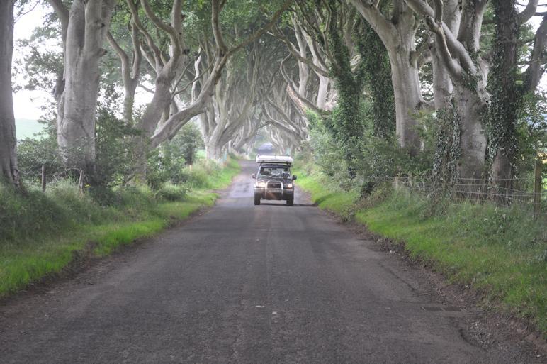 http://www.ulmo.net/sorties/2012-vacances/photos/irlande/2012-08-12%20-%20irlande%20-%20route%20avec%20des%20arbres%20magnifiques%2003.jpg